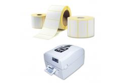 Etichete autoadezive 100x100 mm, 500 buc, termo, rola
