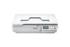 Epson WorkForce DS-5500N scaner, A4, 1200x1200dpi, USB 2.0, NET