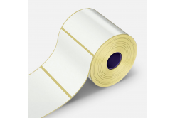 Etichete autoadezive 100x100 mm, 500 buc, hartie, TTR, rola